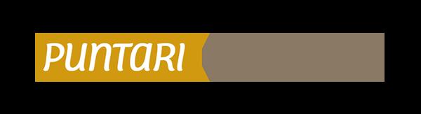 Palvelutalo Puntarin logo.